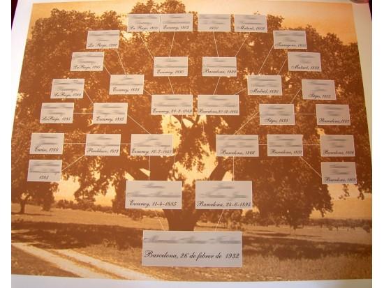 Árbol genealógico de 4 generaciones atrás con 7 documentos.
